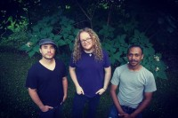 The Andrew Thelston Band